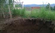 """""""Hố tử thần"""" sâu 10 m bất ngờ xuất hiện giữa ruộng mía"""