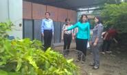 Giao lưu trực tuyến Zika: Thai phụ đừng quá lo!