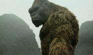 Đặt mô hình khỉ Kong ở khu vực tượng đài Quyết tử không phù hợp
