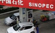 Interpol truy nã 3 quan chức Trung Quốc