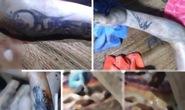 Vụ giết người cắt bộ phận sinh dục: Nhận dạng qua hình xăm