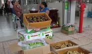 Việt Nam xuất hộ trái cây cho Thái Lan!