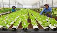 Ưu đãi cho vay nông nghiệp công nghệ cao