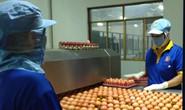 Trứng gà đạt chứng nhận chuỗi chiếm trên 50% thị phần