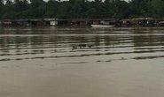 Đồng Nai: Phát hiện thi thể 2 nam thanh niên trên một khúc sông