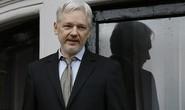 Ông chủ WikiLeaks ra điều kiện mạng đổi mạng