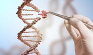 Tìm ra phương pháp tiêu diệt hoàn toàn virus HIV