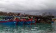 Hỗ trợ ngư dân tránh, trú bão