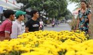 Nhộn nhịp chợ hoa Tết Sài Gòn