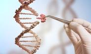 Tạo ra bút chì sửa lỗi di truyền