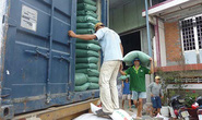 Xuất khẩu gạo sẽ tốt hơn