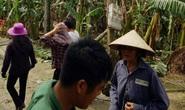Trèo cây phát quang sau bão số 10, trưởng thôn ngã tử vong