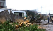 VIDEO Graphic: Cơn bão số 12 và những thiệt hại nặng để lại