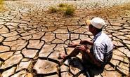 ĐBSCL đói vốn ứng phó biến đổi khí hậu