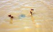 Thi bơi qua sông lúc say, một thanh niên chết đuối