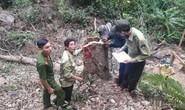 Phá rừng khi chưa được phép khai thác khoáng sản