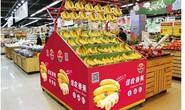 Bầu Đức xuất khẩu hàng ngàn tấn chuối sang Trung Quốc