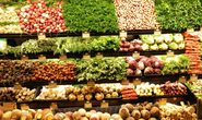 Khởi nghiệp với thực phẩm sạch, lưu ý điều gì?
