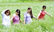 Kỳ lạ cánh đồng ngò rí bỗng hút khách ở Bà Rịa