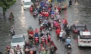 Mưa dồn, triều cường dập, Nam Sài Gòn nước ngập mênh mông