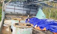 Kho hóa chất Made in China ở Quảng Bình chỉ là chất tẩy rửa?