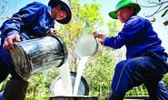Những điều doanh nghiệp đưa lao động đi làm việc tại Lào cần biết