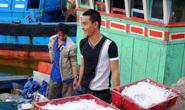 Hỗ trợ đào tạo nghề cho người dân 4 tỉnh miền Trung