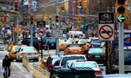 Sống trong thành phố kẹt xe dễ bị loãng xương