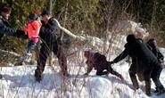 Nhà Trắng bác tin phái 100.000 quân truy quét người nhập cư