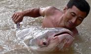 Ký ức về túi cá Biển Hồ