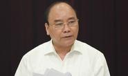 Thủ tướng yêu cầu Bình Định xử lý nghiêm phá rừng An Lão