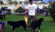 Kinh hoàng chó nuôi biến thành mãnh thú ở Hải Phòng