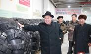 Bí ẩn dịch bệnh ma bao trùm khu thử hạt nhân Triều Tiên