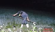 Về Nghệ An nín thở đi săn chân dài trong đêm