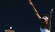Xem Federer vào chung kết, chị em Williams tranh vô địch nữ