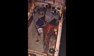 Cá mập khổng lồ lao lên thuyền tấn công ngư dân