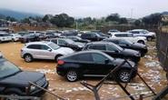 Mạo danh Bộ Tài chính lừa bán thanh lý ô tô vụ Dũng mặt sắt