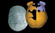 Phát hiện loài người mới ở Trung Quốc, nửa người nửa Neanderthal