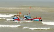 """1 ngư dân Bình Định mất tích sau khi tàu bị """"tàu lạ"""" đâm chìm"""