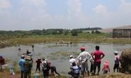 Đổ xô đi bắt cá ở hồ thủy điện Trị An
