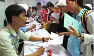 Giới thiệu việc làm cho thực tập sinh IM Japan về nước