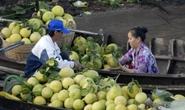 Trái cây ở ĐBSCL sốt giá