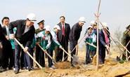 Tết trồng cây, cùng nhau bảo vệ rừng