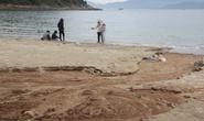 Công trình 40 móng biệt thự ở Sơn Trà đẩy bùn đất xuống biển