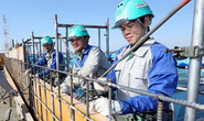 Bắt đầu nhận hồ sơ thực tập kỹ thuật tại Nhật