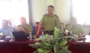 Vụ chặt cây rừng nuôi bò: Công bố quyết định thanh tra