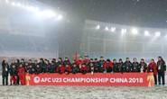 Vinh danh tân á quân U23 châu Á