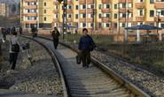 Dịch cúm bùng phát, Triều Tiên xin viện trợ nhân đạo