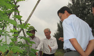 Nông nghiệp hữu cơ được nhà nước hỗ trợ cao