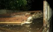 Giám đốc thủy điện Sông Tranh 3 cất giấu cả kho gỗ rừng